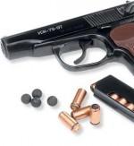 Новые правила и условия хранения оружия